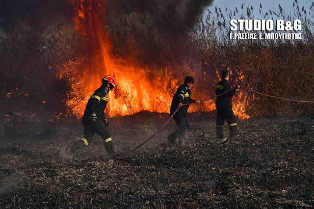 Κύθηρα: Μάχη με τις φλόγες στον Μυλοπόταμο