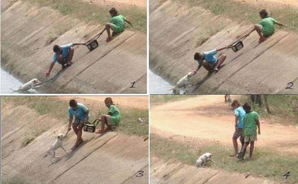 These photos of two children in Sri Lanka collaborating to rescue a dog who had fallen into a ravine.