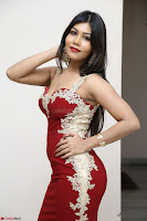 Rachana Smit in Red Deep neck Sleeveless Gown at Idem Deyyam music launch ~ Celebrities Exclusive Galleries 064.JPG