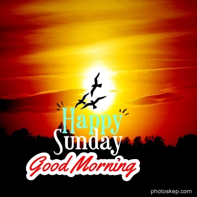 happy-sunday-good-morning-images-photos-pics-Greetings-2