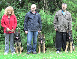 Three german shepherds with their puppy walkers standing in a garden
