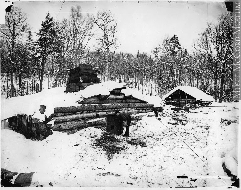 Climbing My Family Tree: Typical Ontario Shanty in Winter