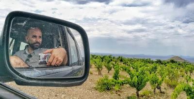 wine influencer bloggerù