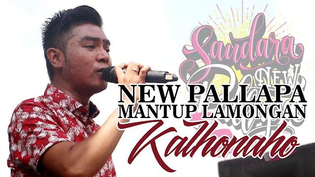 Lagu New Pallapa Live Mantup Lamongan 2017