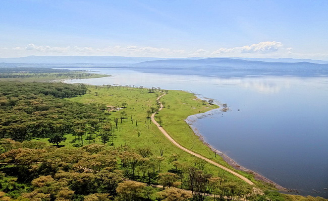 Xvlor.com Lake Nakuru National Park is conservation ring for pink flamingo battalions