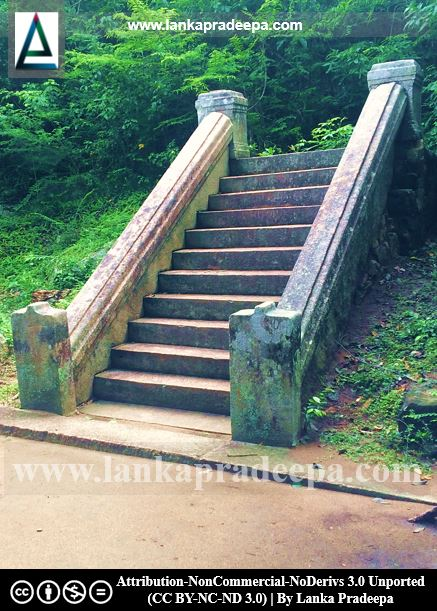 A flight of steps, Arankele