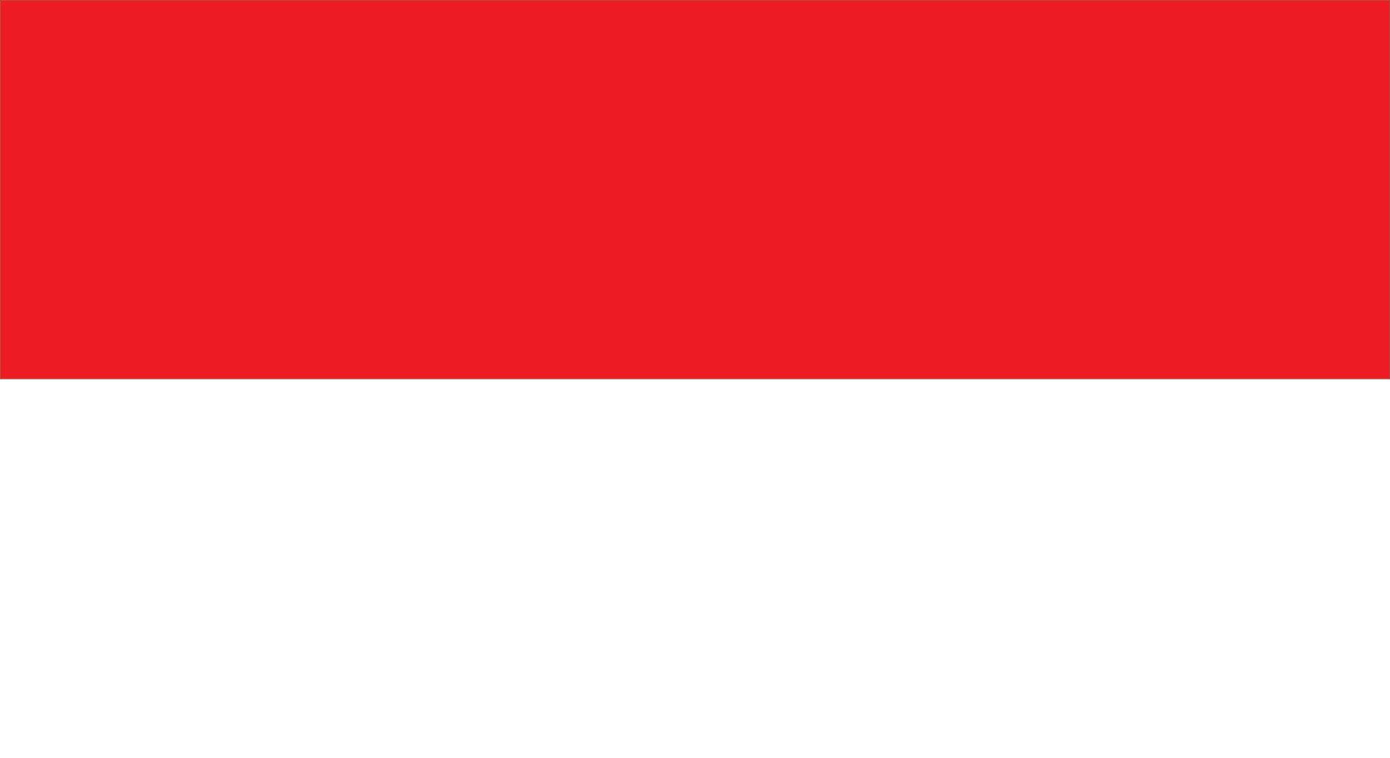 merah putih polos