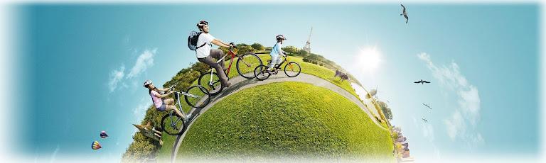 выбор велокресла для ребенка