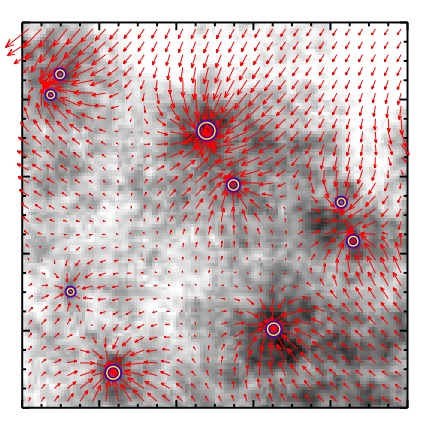 Researchers use network theory to solve the mystery of stellar initial mass function