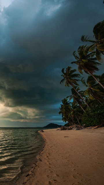 Wallpaper with beautiful views of the tropical beach
