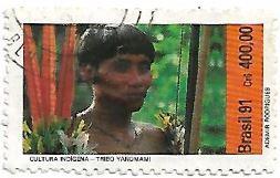 Selo Tribo Yanomami