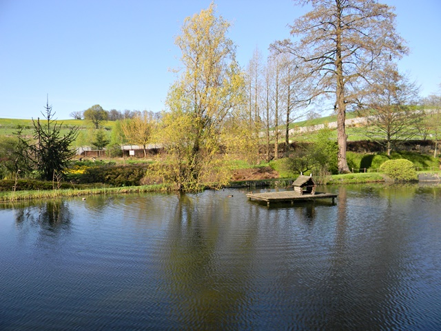 W Wojsławicach w arboretum jest kilka stawów.