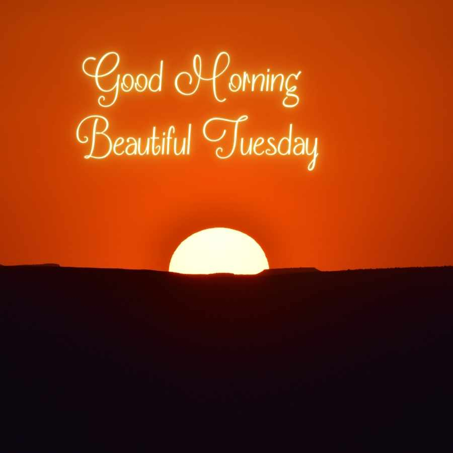 beautiful tuesday images