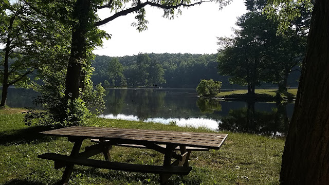 Picnic table near the lake