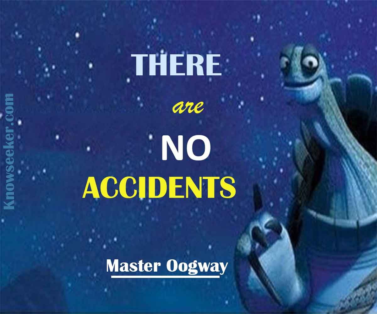 There are no accidents- master oogway