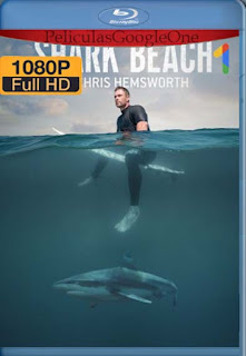 Playa de tiburones con Chris Hemsworth (2021)[1080p BRrip] [Latino-Inglés] [Google Drive] chapelHD