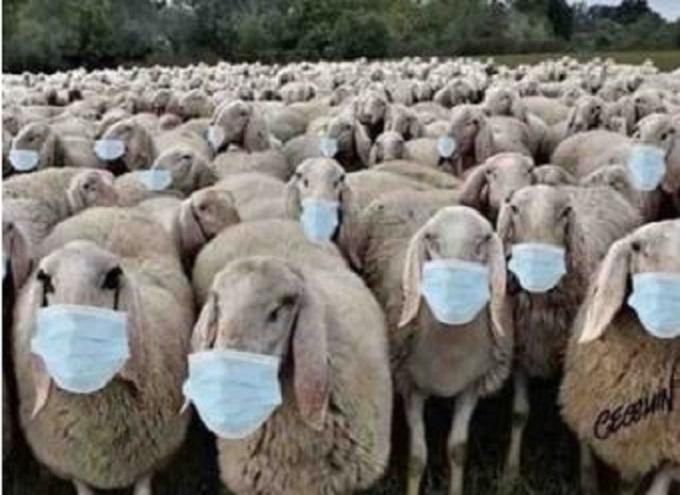 Covid-19 : Aux abrutis qui portent un masque sans qu'on le leur demande!
