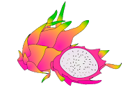 dragon fruit clipart images