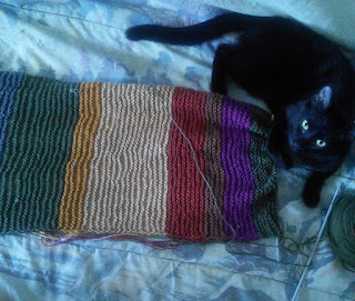 A striped scarf on a straight needle, a black cat is sitting next to the knitting needle.