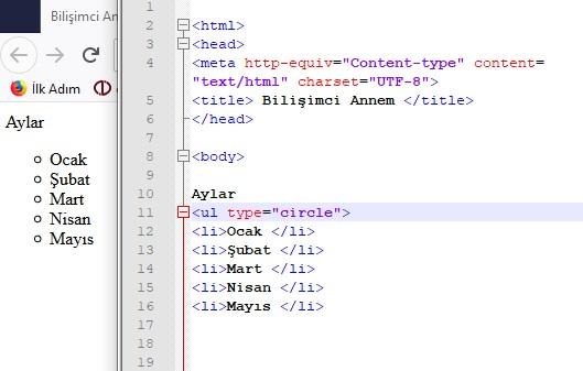 html type etiketi
