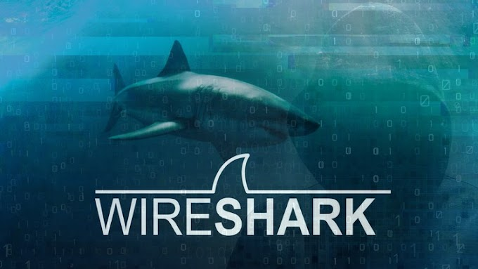 Free Wireshark: Packet Analysis and Ethical Hacking: Core Skills