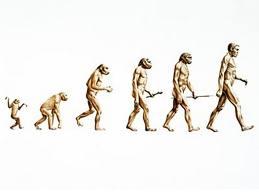 Evolução Natural