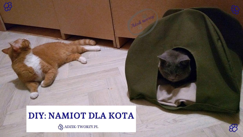 DIY: Namiot dla kota - i mruczek schowany jak się patrzy!