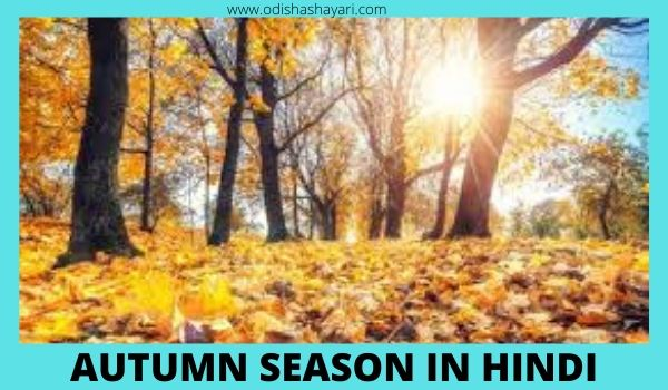 Autumn Season in Hindi