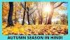 autumn season in Hindi - शरद ऋतु का मौसम हिंदी में