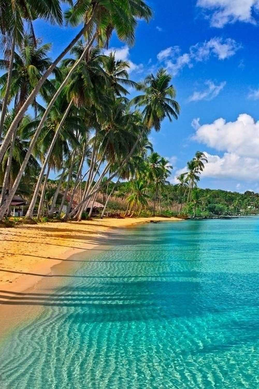The Nicest Pictures: Caribbean Beach