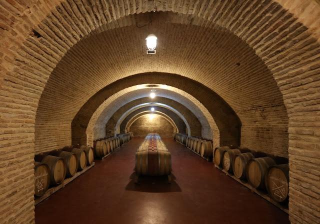Wine cellar Marani