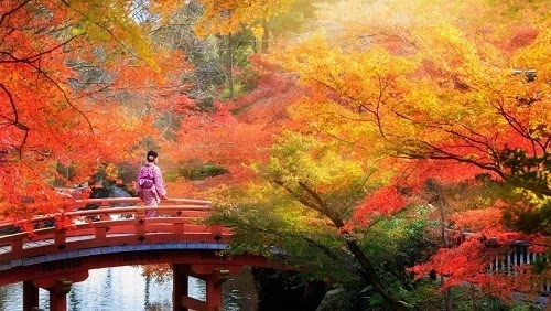 The most beautiful autumn views in Japan