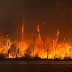 200,000 na Residente sa California, Sapilitang Pinalikas dahil sa Wildfire