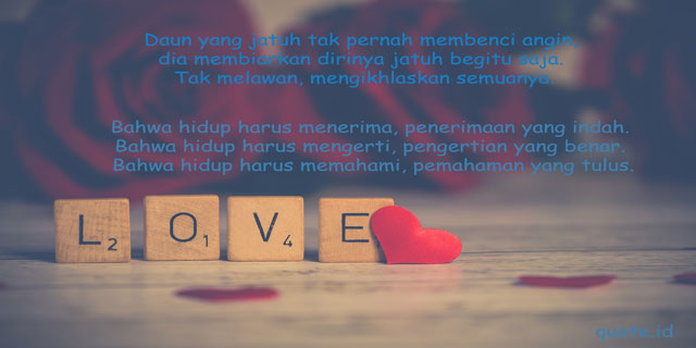 quotes cinta dari novel