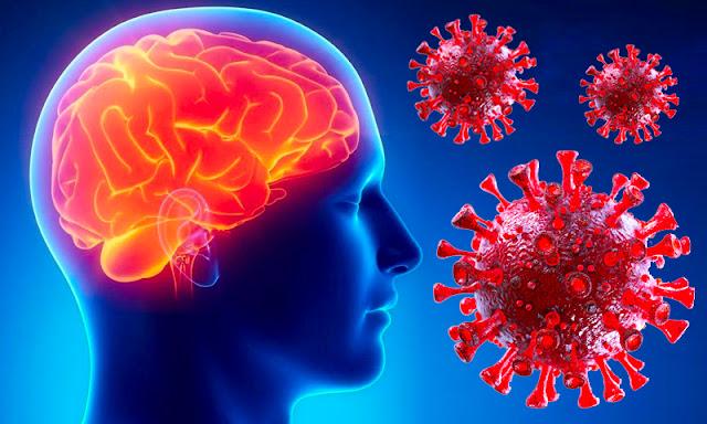 Коронавирус убивает интеллект. И он не восстанавливается даже после выздоровления, выяснили ученые