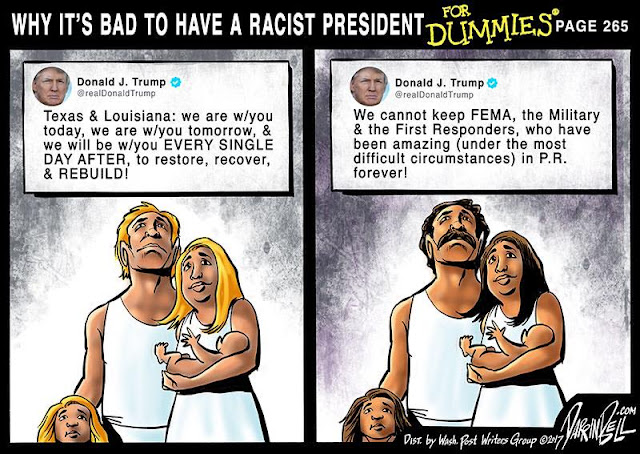 Title:  Why It's Bad To Have a Racist President for Dummies, Page 255.  Image One:  Picture of white couple with Donald Trump tweet saying,