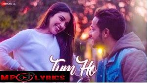 Tum Ho Lyrics – Shahzeb Tejani hindi latest song video download