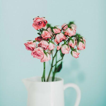 صور زهور ورق حائط 15