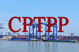 File excel Biểu thuế xuất nhập khẩu ưu đãi theo Hiệp định CPTPP giai đoạn 2019-2022 Nghị Định 57/2019/NĐ-CP.