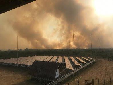 Deputado pede auxílio da FAB e contratação de aviões agrícolas para combate de incêndios no Pantanal