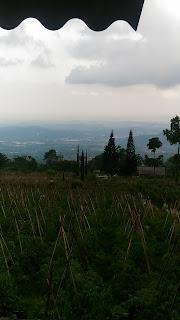 kota ungaran dari homestay pinus
