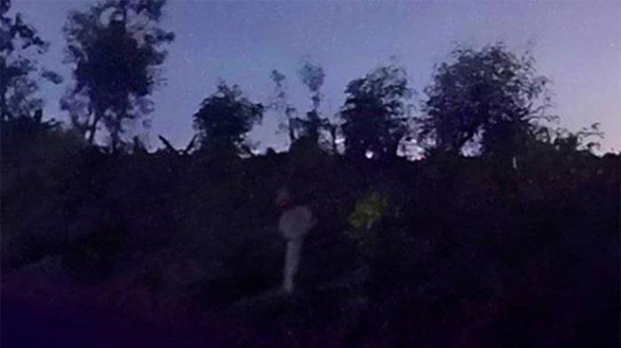 Fenomena Pocong Kedungwaru Kidul