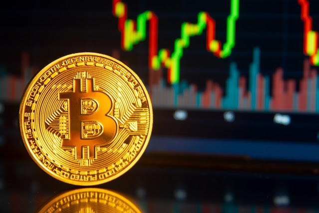 Should You Invest In Stocks Or Bitcoin?