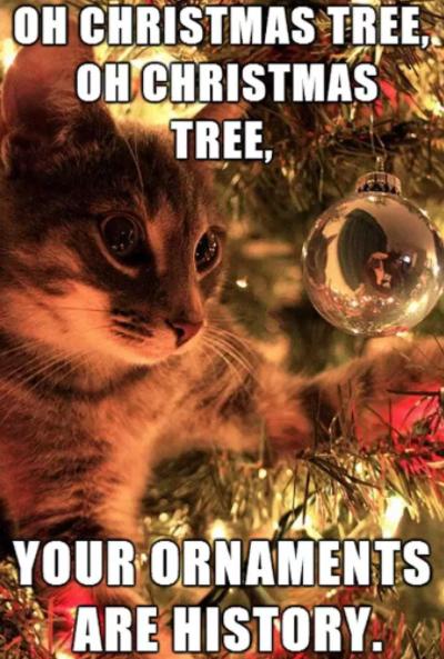 Funny Christmas Memes 2018
