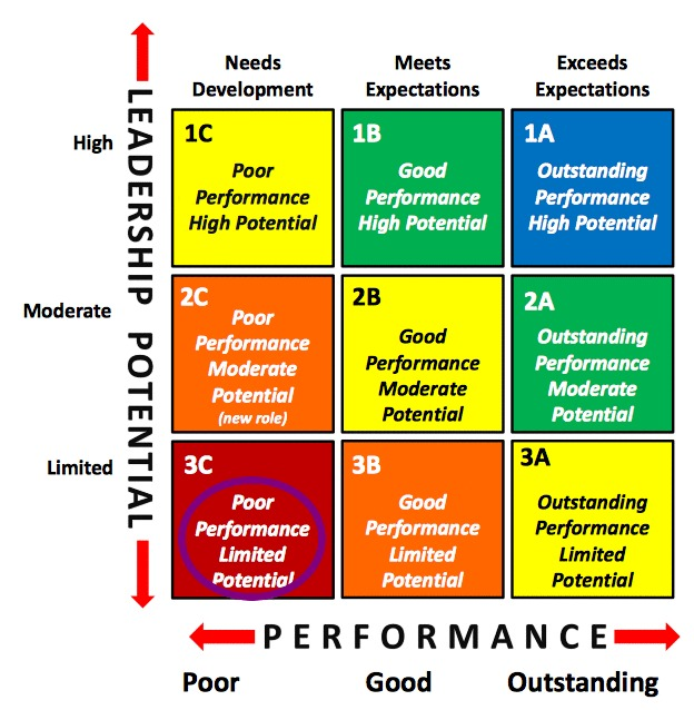 Talent Management 9 Box Grid Poor Performance Limited Potential