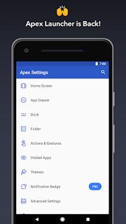 Apex Launcher Customize v4.9.0 Pro APK