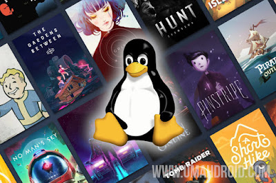 Memainkan Game Windows di Linux