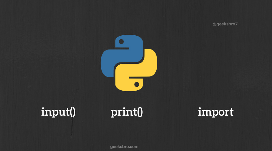 python input output