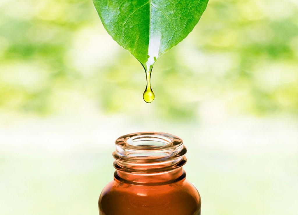 Benefits of natural antibacterial herbal oils