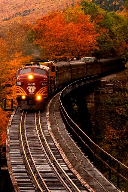 Train Bridge Fall Leaves
